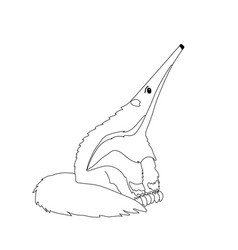 Cartoon animal clip art anteater vector