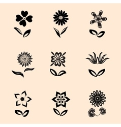 Flower icons set Camomile daisy orchid with vector