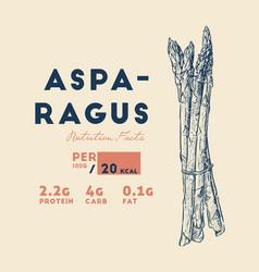 Health benefits asparagus vector