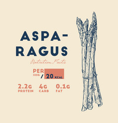 health benefits of asparagus vector image