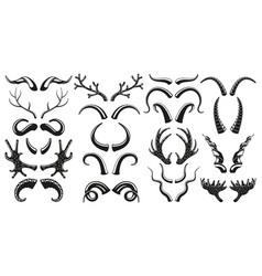 hunting wild animals deer goat horns antlers vector image