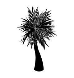 Single palm tree icon image vector