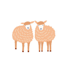 Two cute sheep flat adorable vector