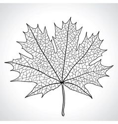 Leaf of a maple nature symbol monochrome vector