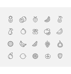 Set of Outline stroke Fruit icon vector image vector image