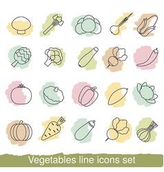 vegetables line icons vegetables line icons vector image