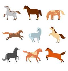 A set cute cartoon horses different vector