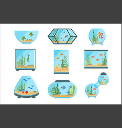 aquarium tanks set different types of aquariums vector image