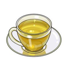 Hand drawn glass cup mug of green tea drink vector