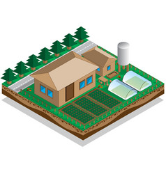 house with a courtyard and garden vector image