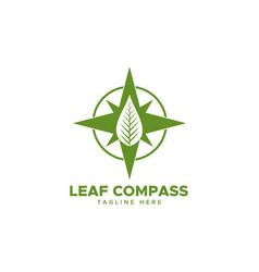 leaf compass logo vector image