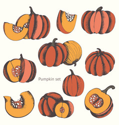Pumpkins set of hand drawn for design vector