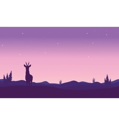 Silhouette of zebra in hills vector image