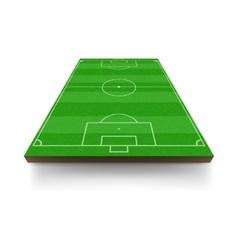 Soccer field icon cartoon style vector