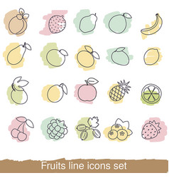 fruits and berries line icon set fruits and vector image