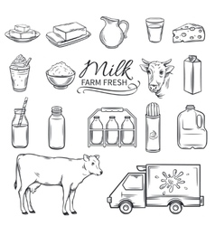Set Hand drawn decorative milk icons vector image vector image