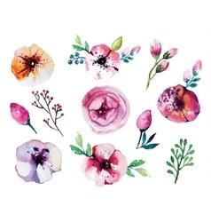 watercolor hand drawn floral set vector image