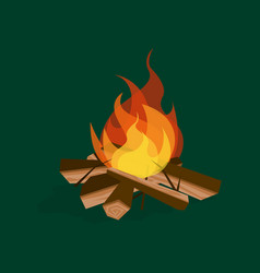 cartoon fire wood and campfire on a green vector image