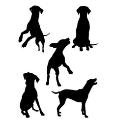dalmatian dog pet animal silhouette 03 vector image
