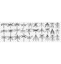 Dragonfly hand drawn doodle set vector