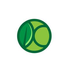 letter k and leaf logo designs inspiration vector image