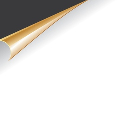 paper slip vector image