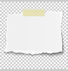 Ragged piece of white paper on sticky adhesive vector