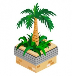 palm plant vector image vector image