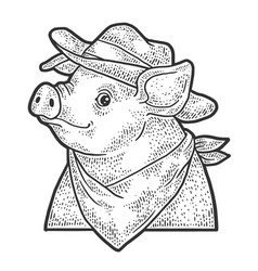 Cartoon cowboy piggy sketch vector
