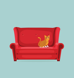 cute cat is sitting on red sofa vector image