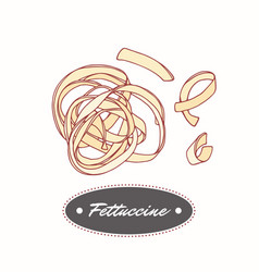 Hand drawn pasta fettuccine isolated on white vector