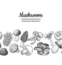 Mushroom drawing seamlees border isolated vector