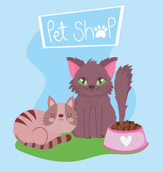 pet shop furry cat and striped kitten with bowl vector image