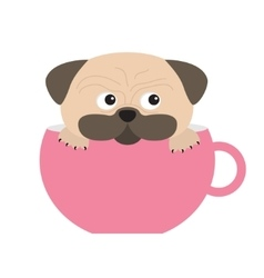 pug dog mops paw sitting in big pink cup cute vector image