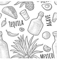 seamless pattern bottle glass tequila salt vector image