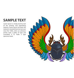 patterned scarab beetle on white background with vector image