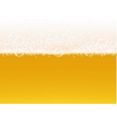 beer foam transparent macro view bubbles on vector image