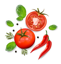 Tomato and chili isolated realisic 3d vector