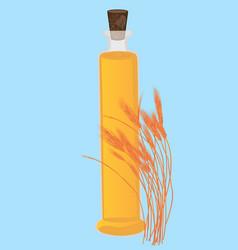 wheat grain oil essential oils for health care vector image