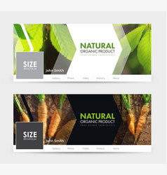 universal template banner for social networks for vector image vector image