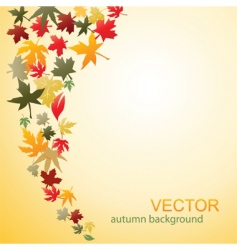autumn 02 vector image