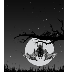 Bat is hanging on a branch in the nighttime vector