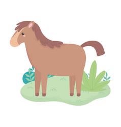 cartoon horse animal standing grass bush isolated vector image