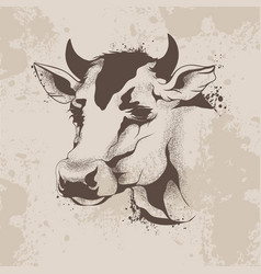 Graphic ink drawing sketch the head of a cow vector