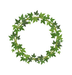 green ivy circle frame wreath fresh leaves vector image