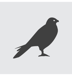 Hawk icon vector