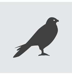 Hawk icon vector image