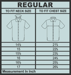 Men shirt regular size vector
