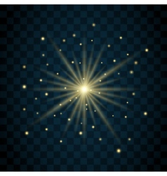 Shine star glitter vector image