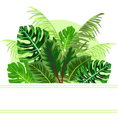 Tropical jungle leaves background vector